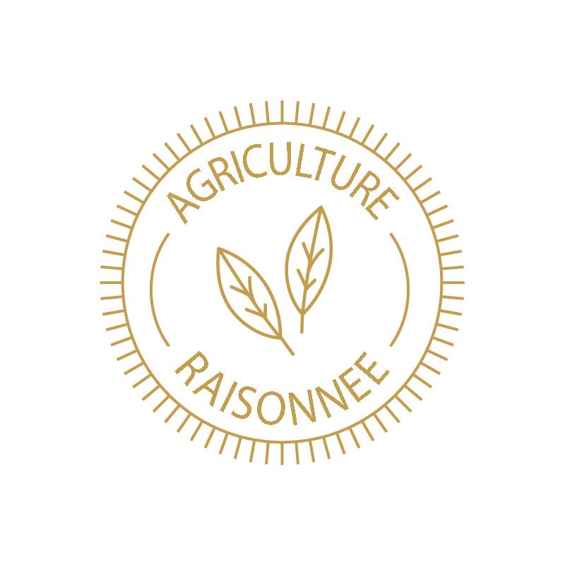 logo chachenga bio agriculture raisonnée doré